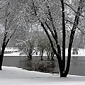 Winter Morning by Sennie Pierson