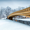 Winter Morning With Bow Bridge by Mihai Andritoiu