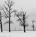 Winter On The Beach by Jackson Pearson