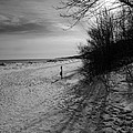 Winter On The Beach  by Susan McMenamin