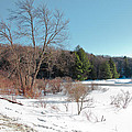 Winter On The Moose River - Old Forge New York by David Patterson
