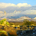 Winter In The Organ Mountains by Jack Pumphrey