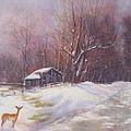 Winter Palette by Howard Scherer