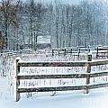 Winter Pasture by Ken Marsh