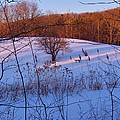 Winter Pasture Sunset by Mark J Curran