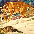 Cougar On The Prowl In Winerer by Al Brown