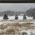 Winter Rain  by Lisa Wormell