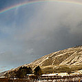 Winter Rainbow by Andrea Goodrich