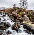 Winter Rapids V2 by Adrian Evans