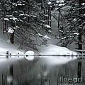 Winter Reflection 004 by Optical Playground By MP Ray