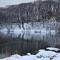 Winter Reflections by Dora Sofia Caputo Photographic Design and Fine Art