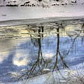 Winter Reflections by John Greaves