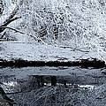 Winter Reflections by Steven Milner