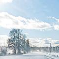 Winter Road by Cheryl Baxter