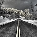 Winter Road by David Andersen