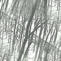Winter Road Dream by Valentino Visentini