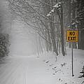 Winter Road During Snowfall I by Elena Elisseeva