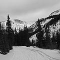 Winter Road by Tonya Hance
