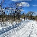 Winter Scape 2 by Gene Cyr