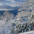 Winter Scene At Berry Summit by Greg Nyquist