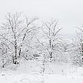Winter Scene by Larry Ricker