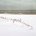 Winter Scene by Margie Hurwich