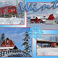 Winter Scenes  by Randy Harris