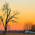 Winter Season Country Sunset by James BO Insogna