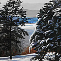 Winter Serenity by Suzanne Schaefer
