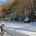 Winter Shack by Paul Ward