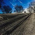 Winter Shadows by Anna-Lee Cappaert