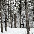 Winter Ski by Jessie Parker