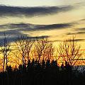 Winter Sky by Gene Cyr