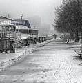 Winter Snow Storm II by Nicky Jameson
