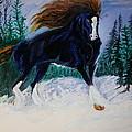 Winter Soldier by Mark Bradley