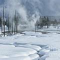 Winter Solitude by Sandra Bronstein