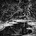 Winter Solitude by Thomas Young
