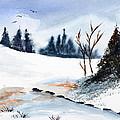 Winter Stream        by Wade Binford