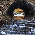 Winter Stream Media by Gary Keesler