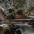 Winter Stream by Mike Reid