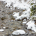 Winter Stream by Pati Photography