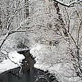 Winter Stream Snow Scene by Clint Buhler