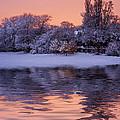 Winter Sunrise by David Pringle