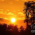 Winter Sunset by DigitalCoast Photography