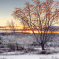 Winter Sunset by Don Powers