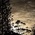 Winter Sunset by Michael  Podesta