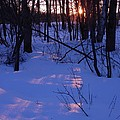 Winter Sunset by Peggy  McDonald