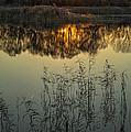 Winter Sunset Reflection by Giordano Aita