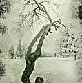 Winter Survivor by John Anderson