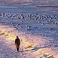 Winter Time At The Beach by Cynthia Guinn